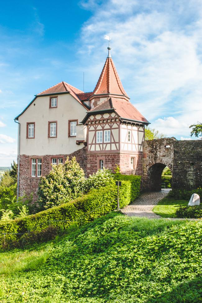 Heidelberg Germany-41