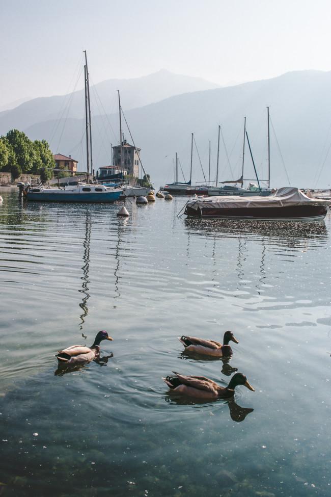 Bellagio Water Sports on Lake Como - The Overseas Escape-1