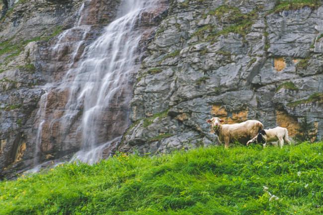 Lauterbrunnen, Switzerland - The Overseas Escape-19