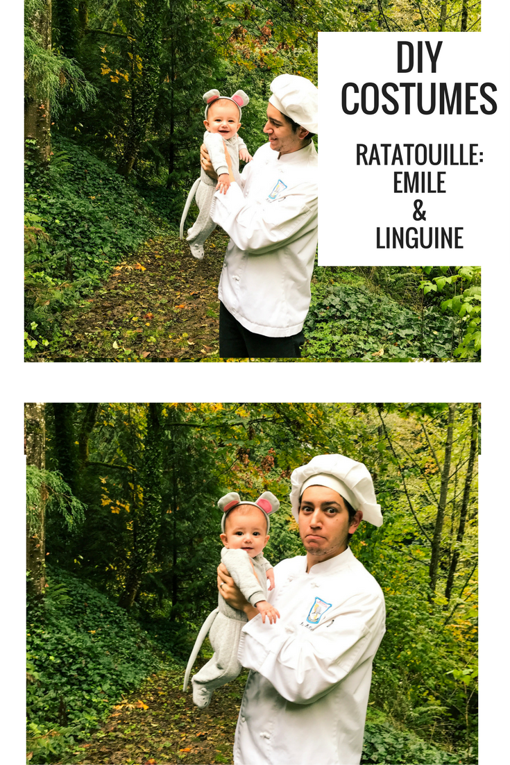 Diy Family Disney Costumes Diy Ratatoullie Costumes Halloween Costumes With A Baby The Ox Mama