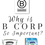 Stonyfield And B Corp