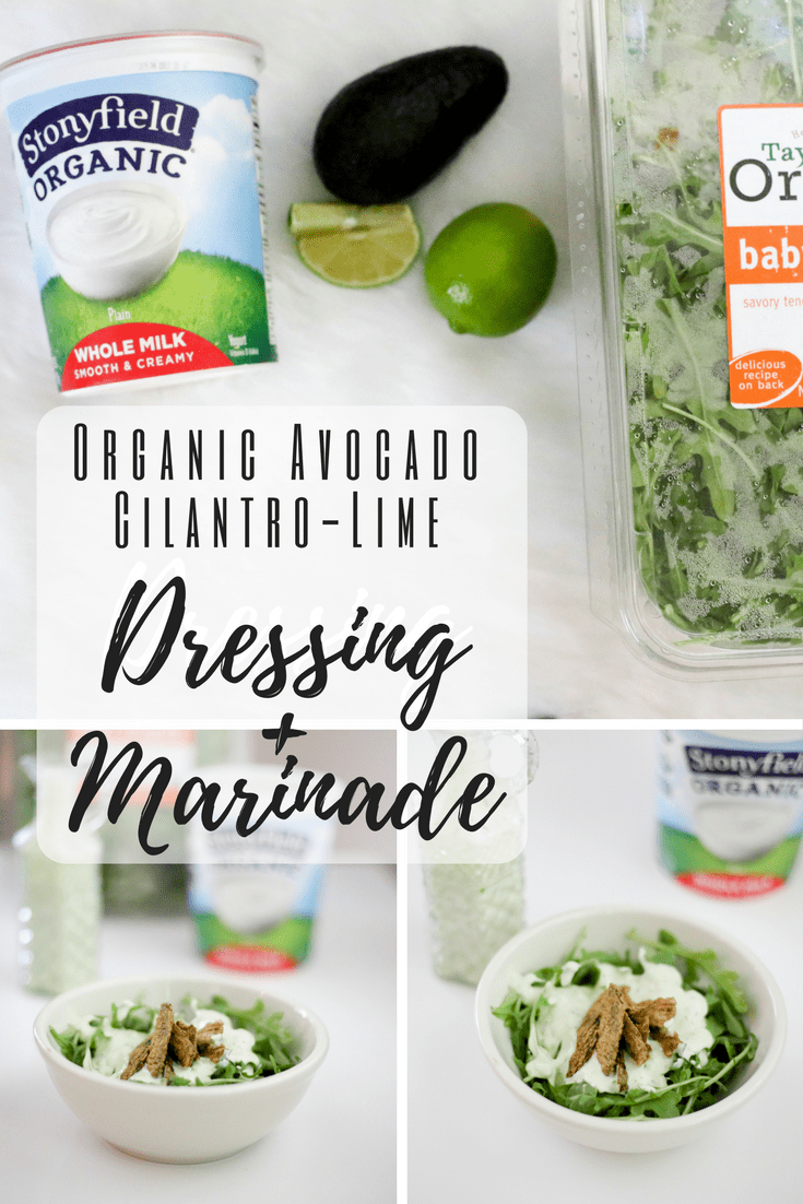 Organic Avocado-Cilantro Lime Dressing and Marinade | Stonyfield and Taylor Farms Organic | Organic Marinated Chicken Salad #AD #Stonyfieldblogger