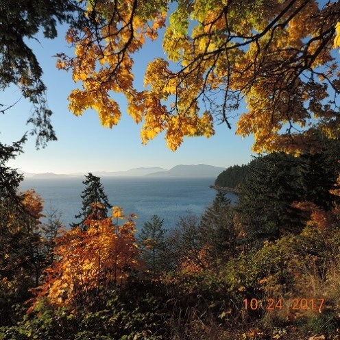 Chuckanut Drive Fall Bay View