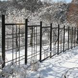 M16– Morris Arboretum of the University of Pennsylvania