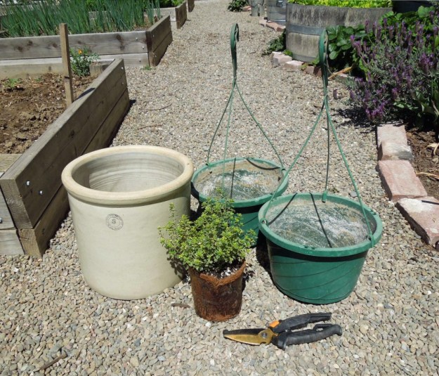 Garden Container Using Old Plastic Plant Hanging Baskets and Ceramic Crock