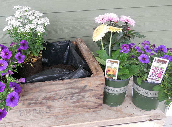DIY Clean Draining Planter Box