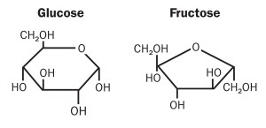 Fructose and Chronic Health Problems: Is Fructose a Key
