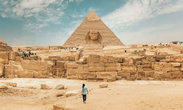 Legal Education in Egypt: A Perspective from Saleh Mohamed