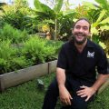Panamanian Chef Mario Castrellón uses ingredients from native rainforest