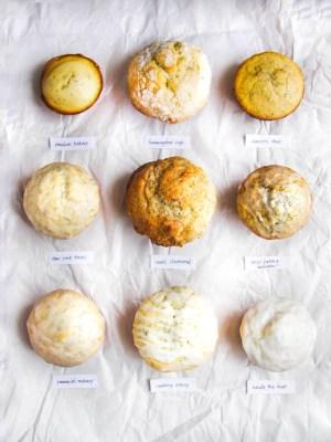 best lemon poppy seed muffin bake off