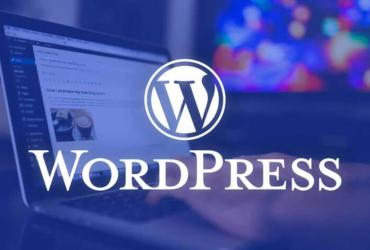 How To Download Best Premium WordPress Themes For Free