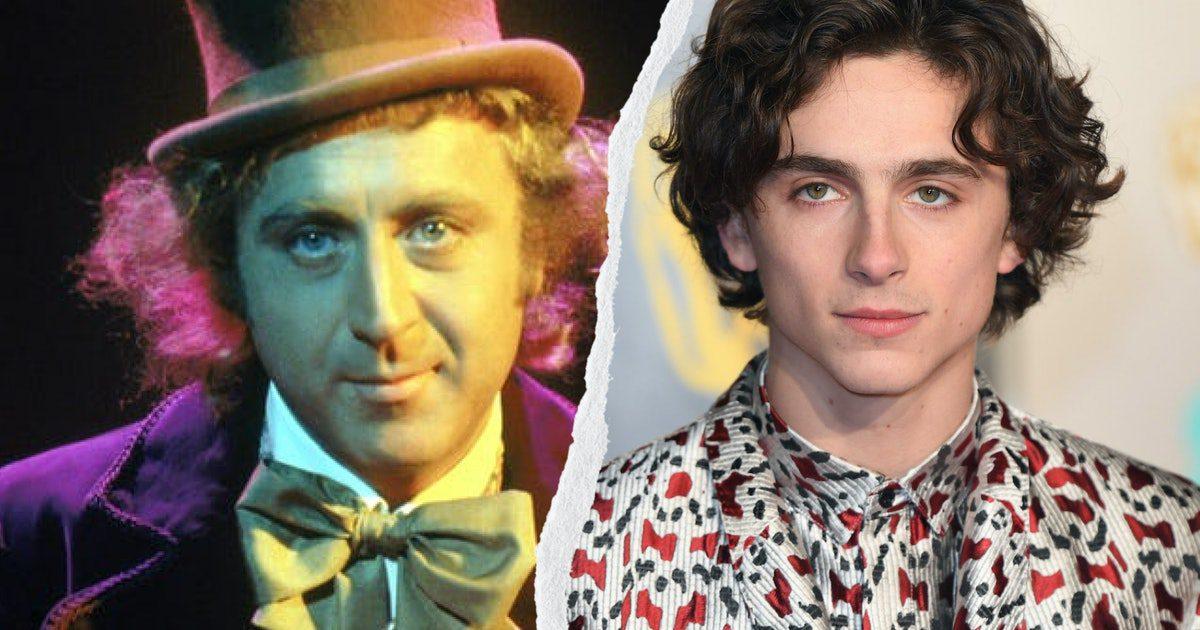 "Timothee Chalamet to play ""Willy Wonka"" in Warner Bros. Movie"