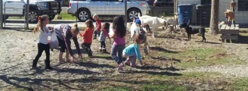 Outdoor kids 8