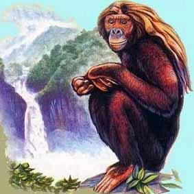 Orang Pendek of Sumatra