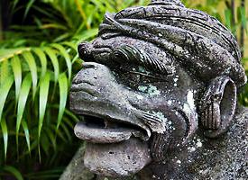 Mande Burung Indian ape man expedition