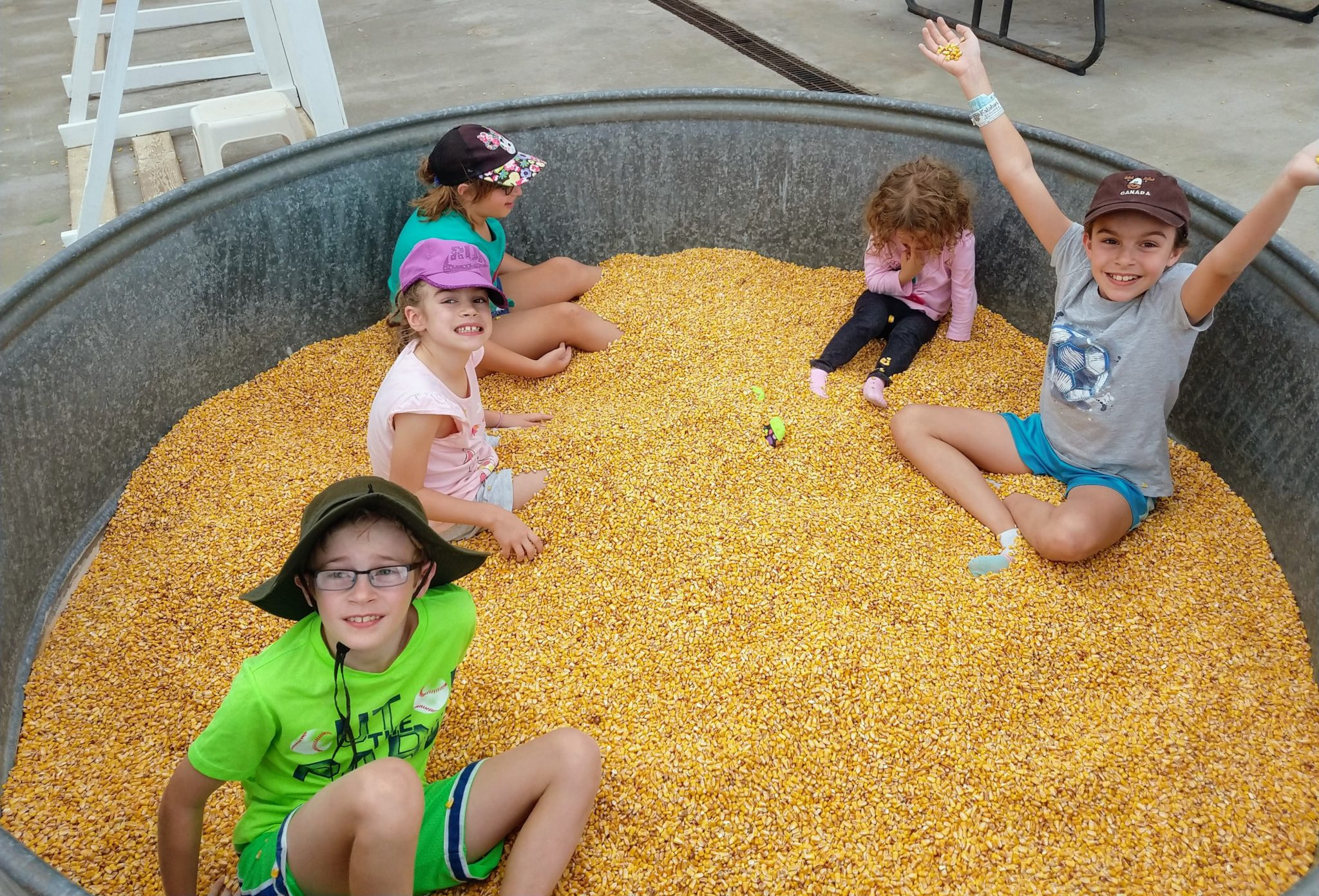 Kids playing in dried corn kernels