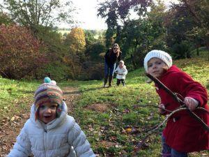 Winkworth Arboretum in Surrey