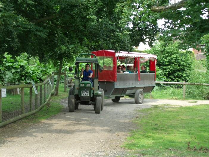 Tractor ride at Godstone Farm