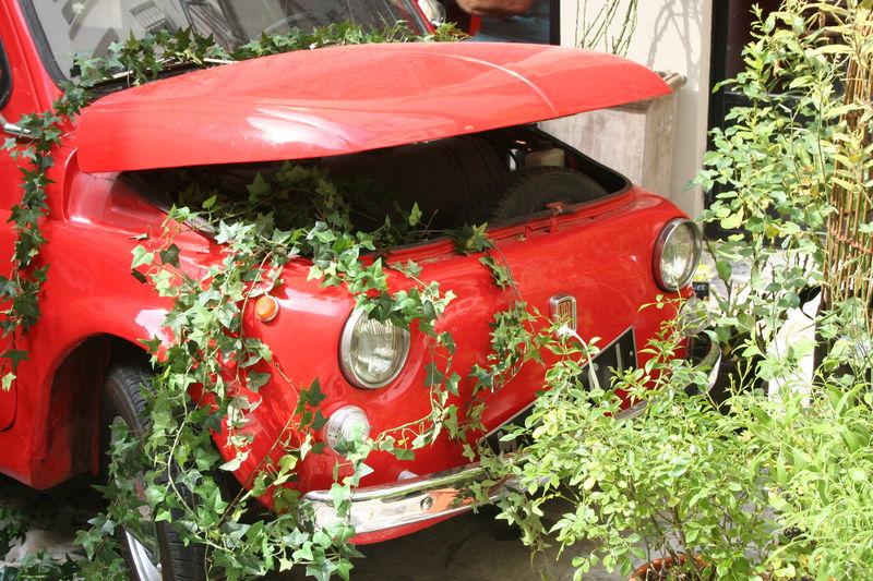 Fiat500première