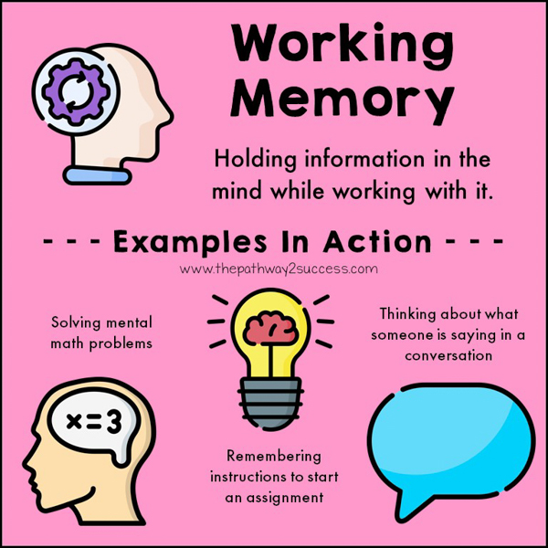 Working memory is the skill that helps us remember information in our brains while we are working with that information at the same time. Examples of this include doing mental math or thinking of directions in our head before starting a task. Strong working memory skills can help accomplish tasks quicker and more efficiently.