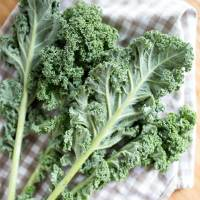 10 Tasty Ways to Enjoy Kale That You Might Not Have Thought Of