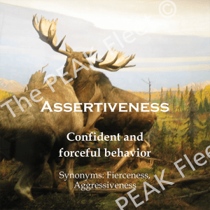 Assertiveness: Confident and forceful behavior