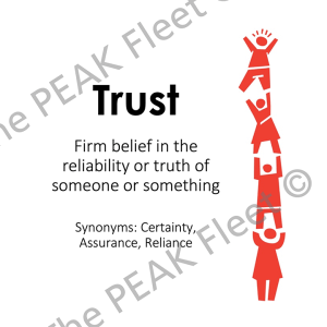 Trust: Firm belief in the reliability or truth of someone or something.