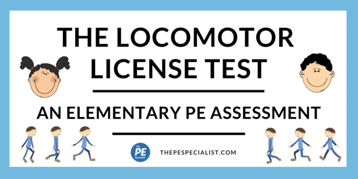 The Locomotor License Test
