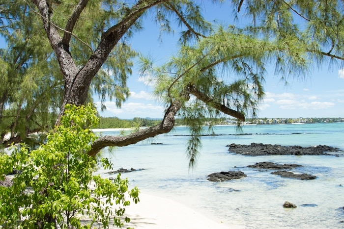 6 Top Favorite Things To Do In MAuritius - Whether you're looking for adventures, sample new foods, or simply want to relax on the breath-taking beaches, Mauritius is definitely the place to go to.
