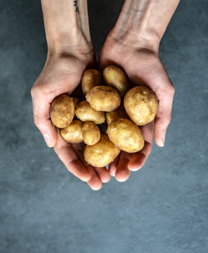 hands holding italian new potatoes