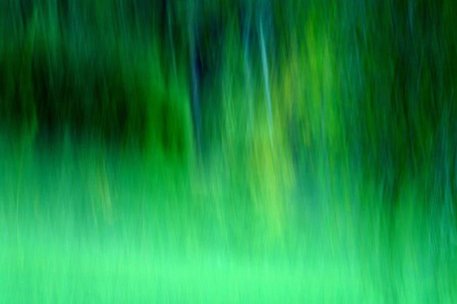 enki22 - green morning flow