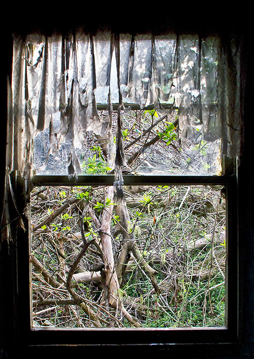 Old-House-Window---6