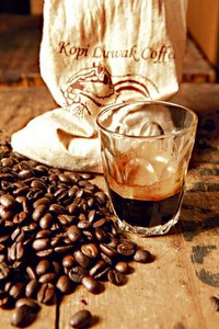 Costliest coffee Kopi Luwak, Asian Palm Civet Kopi Luwak, Kopi Luwak Asian Palm Civet droppings, Kopi Luwak