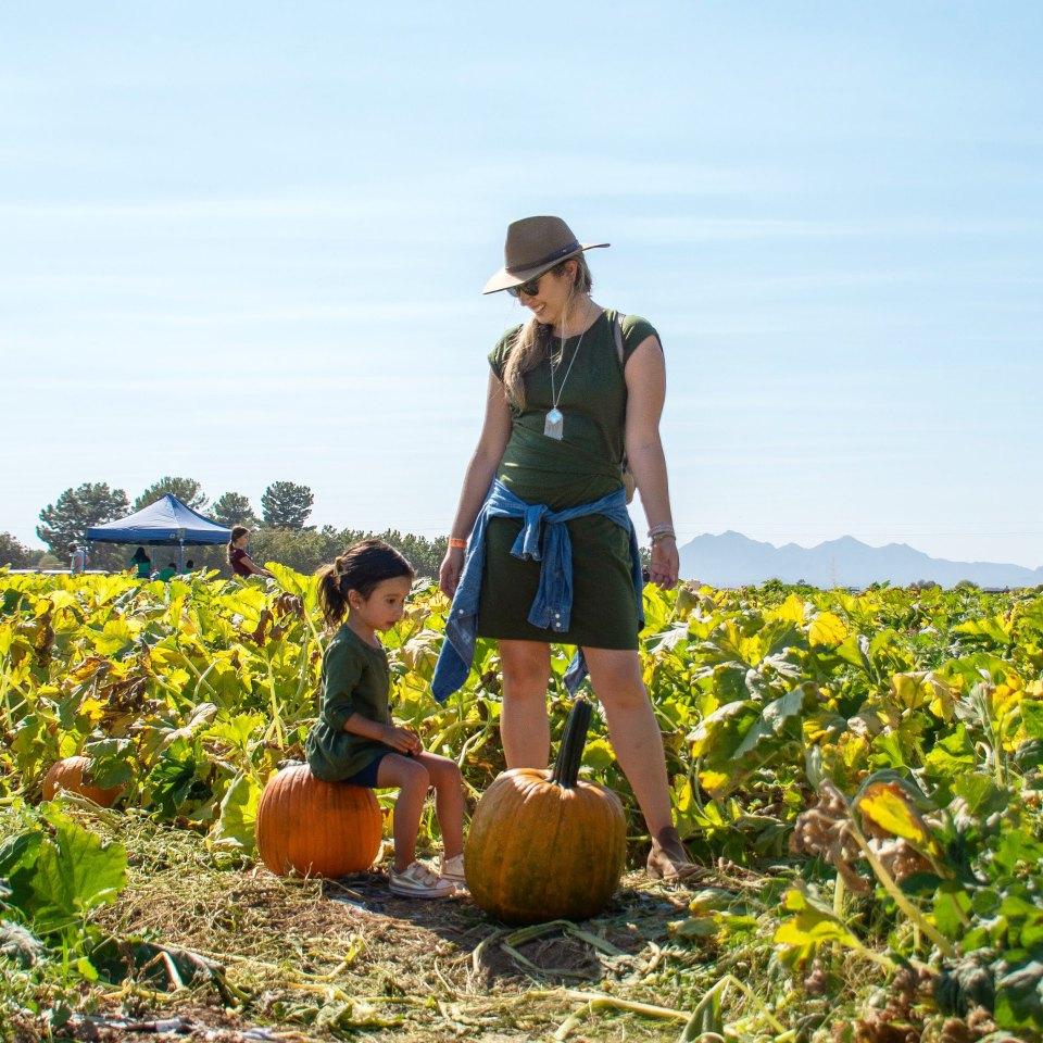 Pick a pumpkin and sit on it