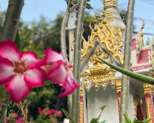 Bangkok Ultimate Travel Guide Spirit House