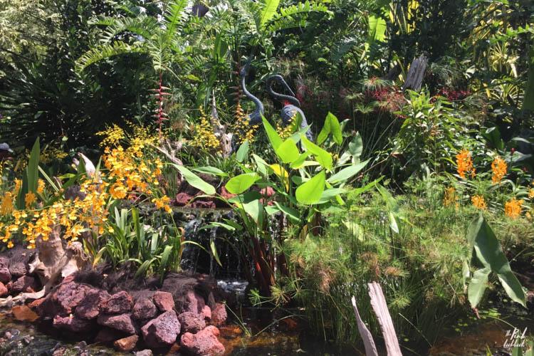 National Orchid Garden Birds
