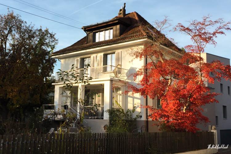 Winterthur Switzerland Day Trip from Zurich House Red Tree