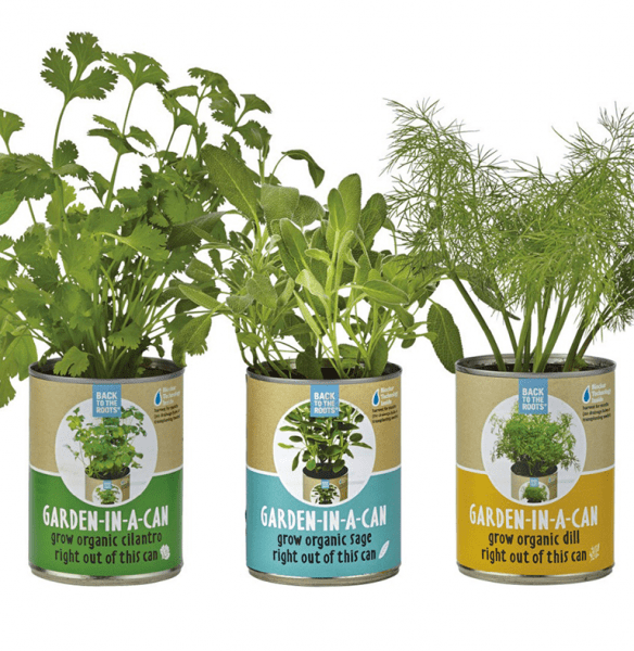Back to the Roots container garden kits for kids.
