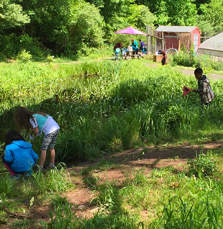 common ground serves as an environmental center, high school and resource for sustainibilty and gardening.