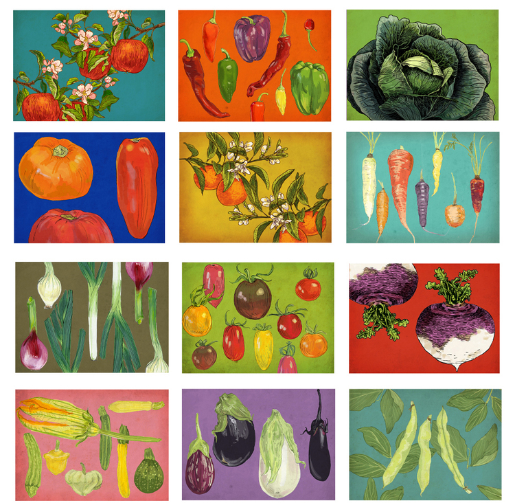 Rigel Stuhmiller box set of farm to table cards are perfect to just say hello.