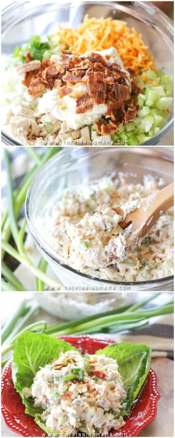 Chicken Salad Ingredients show separated before mixing in large bowl