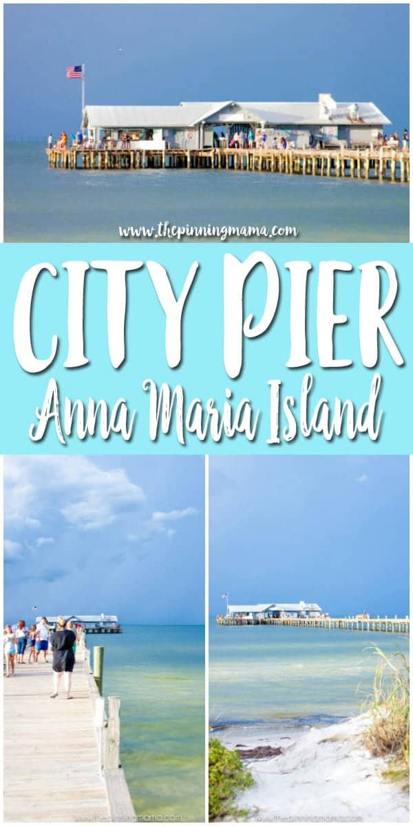 Visit City Pier on Anna Maria Island FLorida to see dolphins, manatees, and even sharks swimming by!