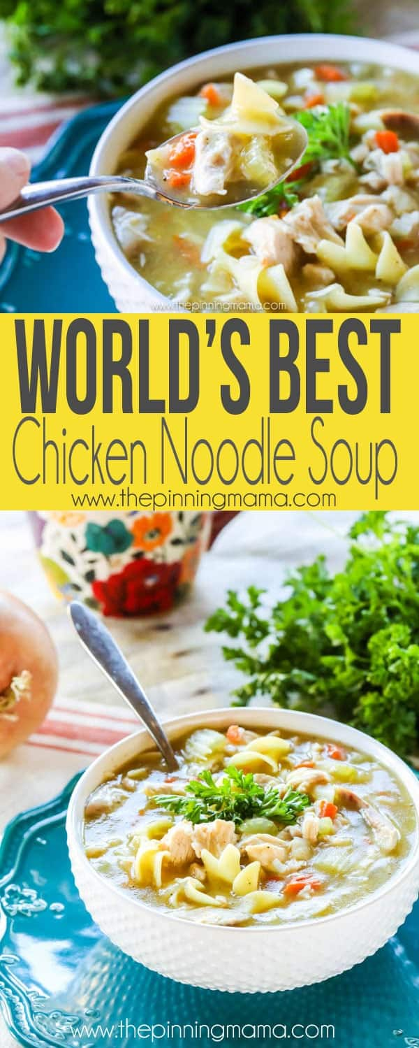 This really is the world's best homemade chicken noodle soup recipe. So simple but so good! We will be eating this soup all winter!!