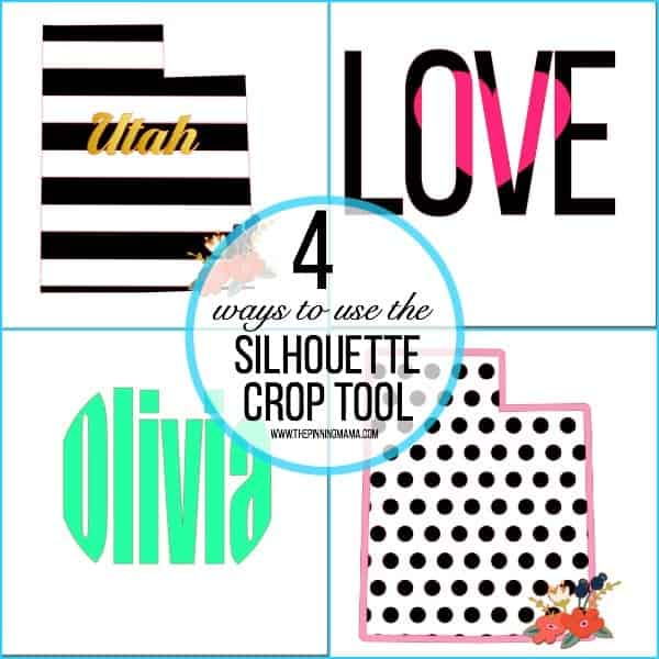 The Crop tool in Silhouette Design.