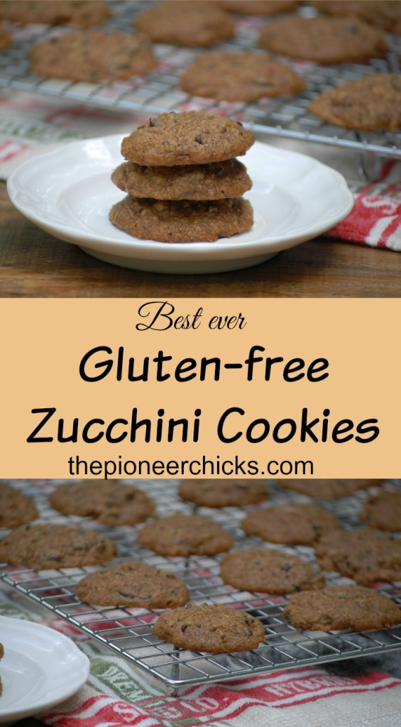 Gluten-free Chocolate Chip Zucchini Cookies- These cookies contain all the essential fall cookie ingredients, oats, butter, a vegetable, and chocolate chips!