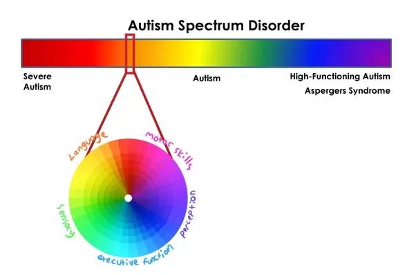 Image result for autism spectrum