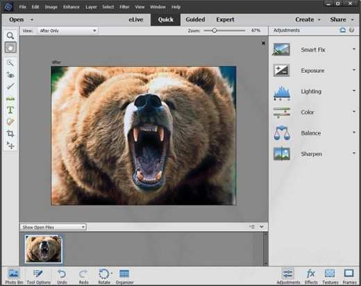 Adobe Photoshop Elements 2018 torrent download