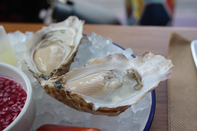 oysters Root Bristol