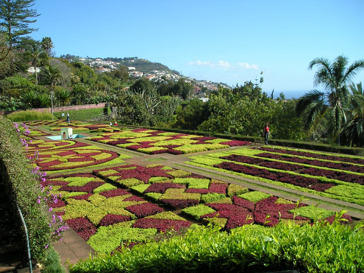 Madeira: visiting the garden island