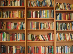 This is a stock photo of some library shelves